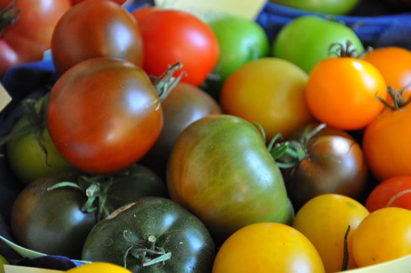 Tomaten1