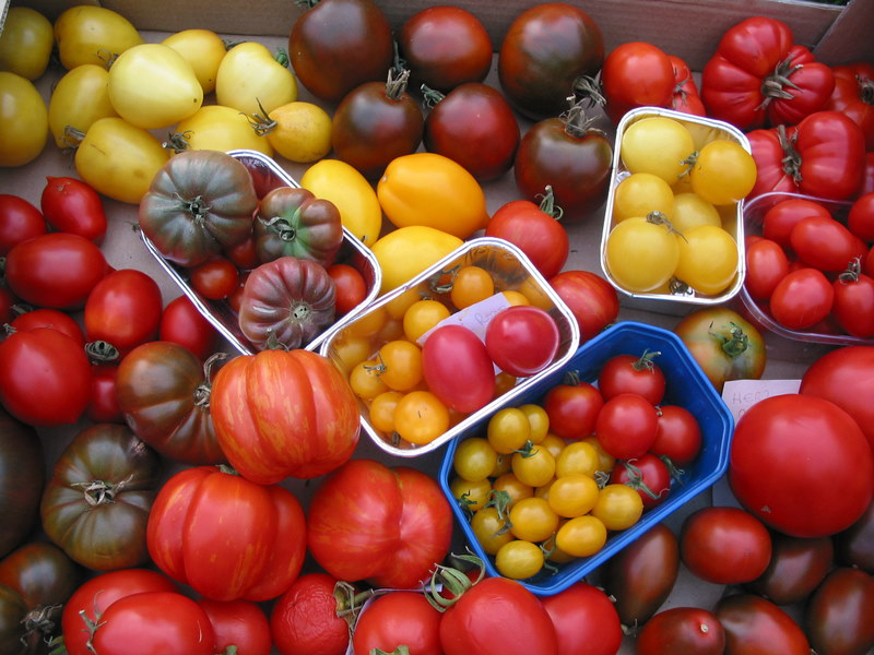 Tomaten29